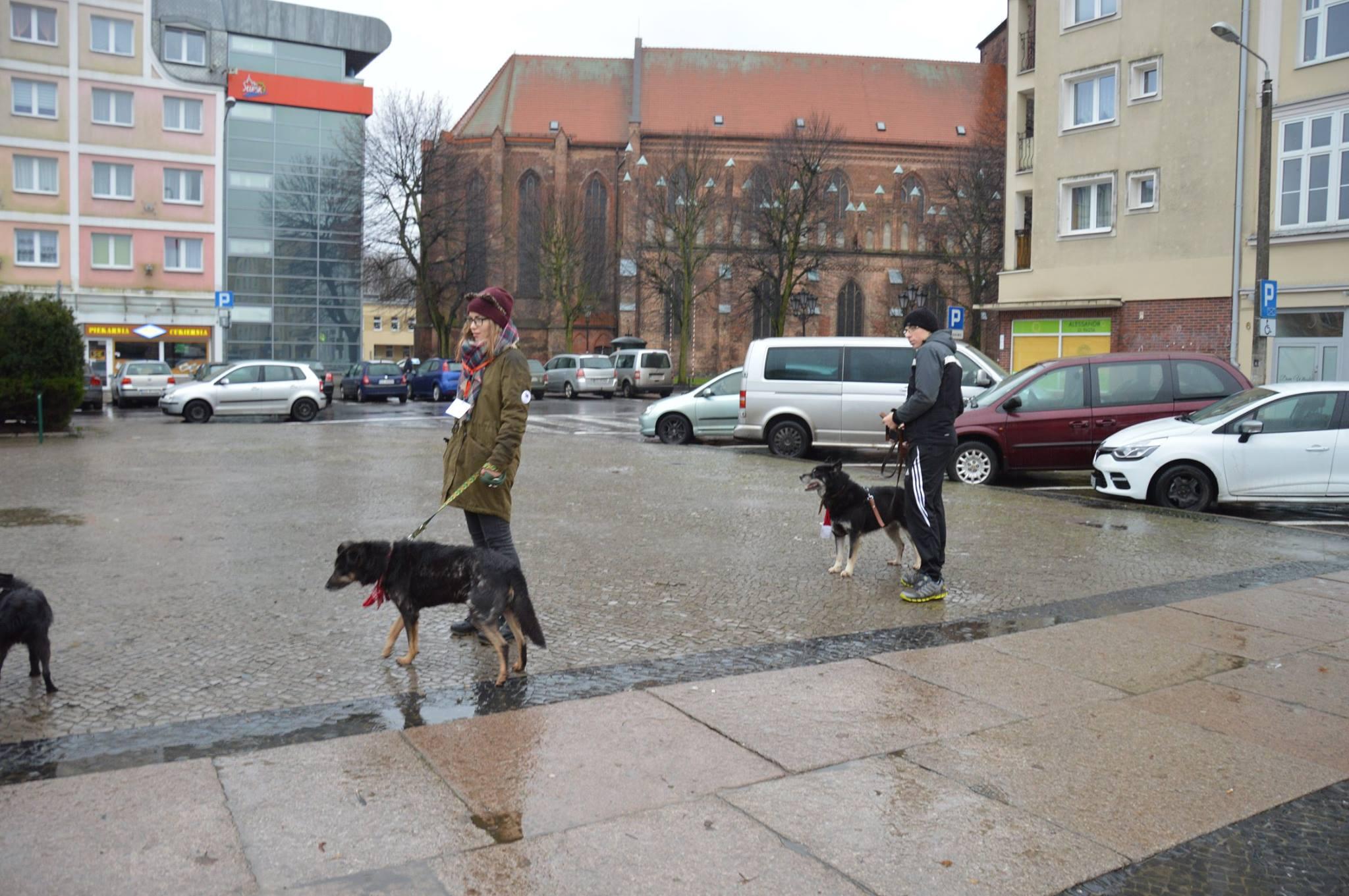 Zwierze_tez_czlowiek_09